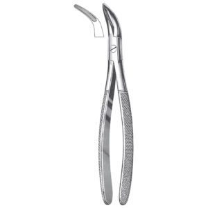 Teeth Extracting Forceps